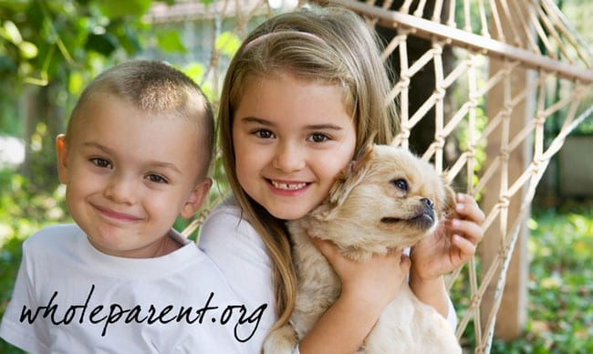 I Am Not the Problem in the Co-parenting Relationship, We Are