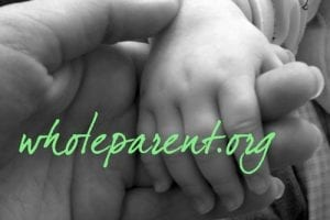 Moving from Parenting To Co-parenting: Joining Together In Divorce