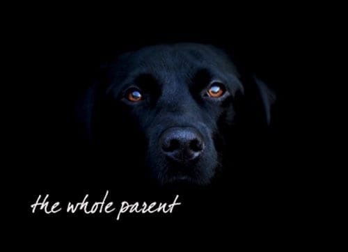 Followed by the Black Dog (of depression)