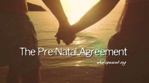The Pre-Natal Agreement from The Whole Parent